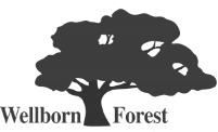 Wellborn Forest